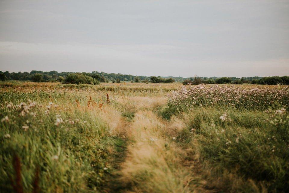 miejsca na plener łąka
